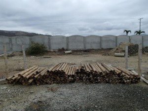 The Bamboo poles on the next door vacant lot